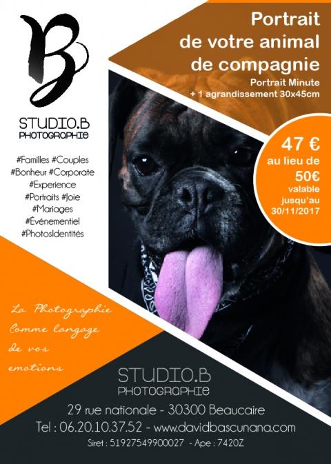 Portrait de votre animal de Compagnie au Studio B à Beaucaire