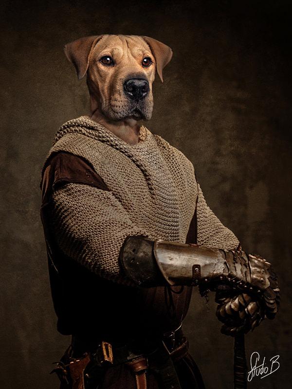 portrait de chien façon tableau de la renaissance